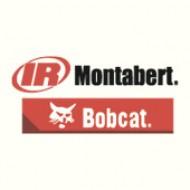 MONTABERT // BOBCAT